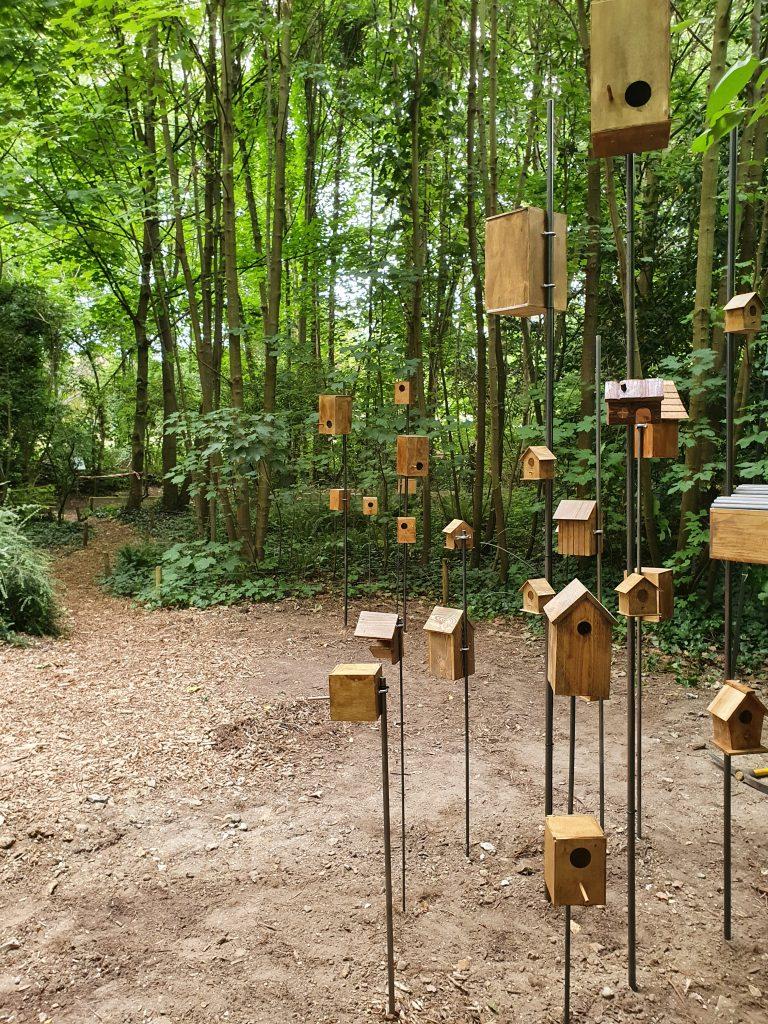 Rêves d'oiseaux, Christian Delécluse, Fondation GoodPlanet, Jardins Ouverts.