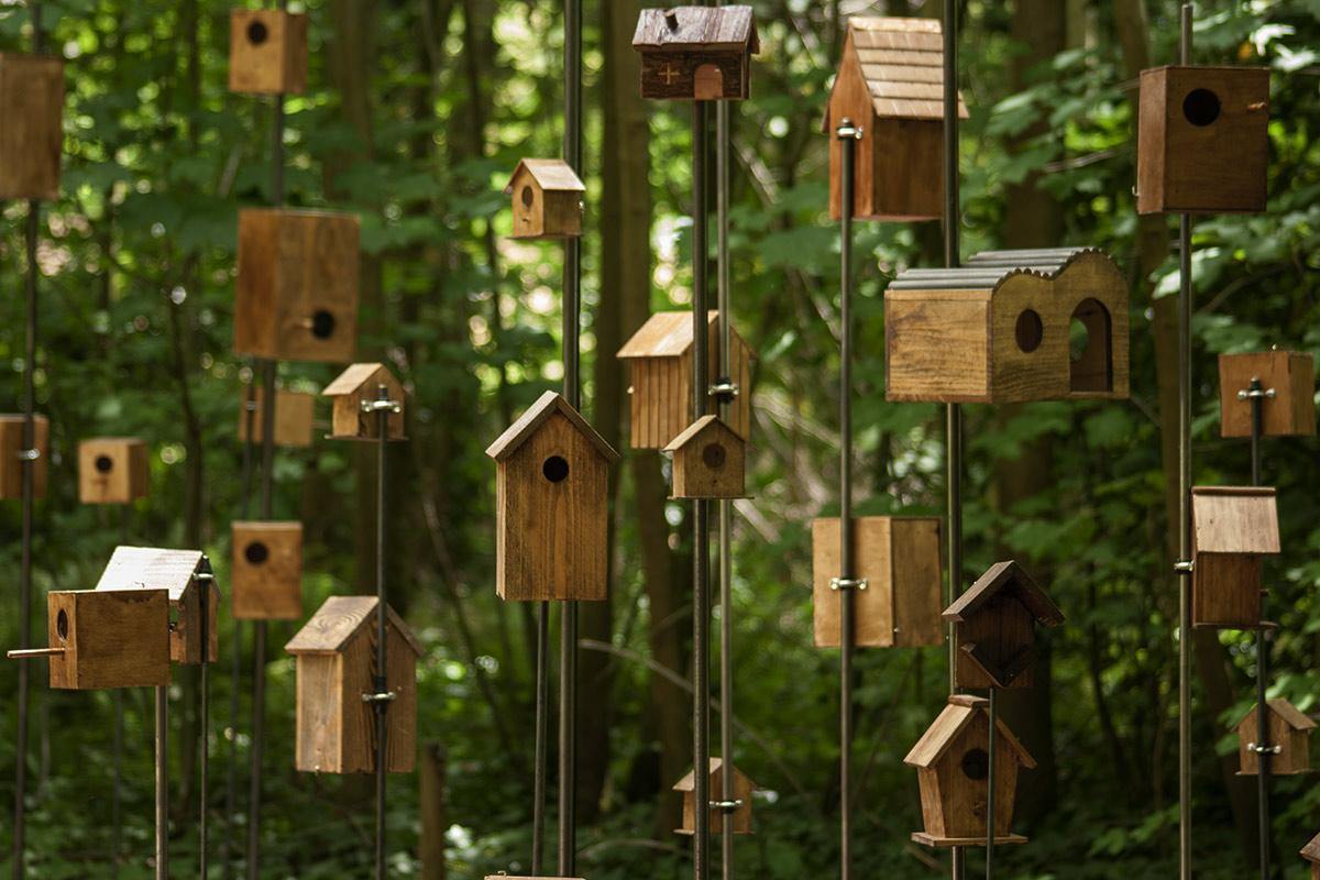 Rêves d'oiseaux, Installation Sonore de Christian Delécluse à la Fondation GoodPlanet aux Jardins Ouverts.